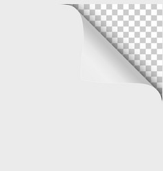 sheet white paper with twisted upper right vector image