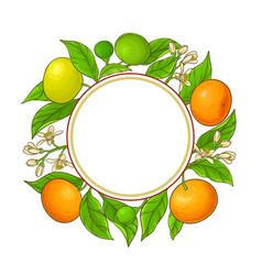 Tangerine ranches frame on white background vector