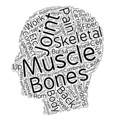 How the Skeletal Muscles cause Back Pain text vector image vector image