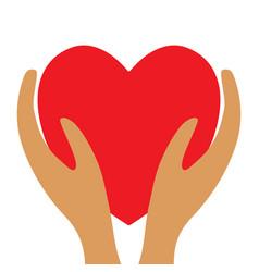 red heart in hands 3812 vector image