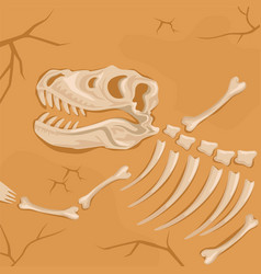 Fossilized dinosaur skeleton buried in the ground vector