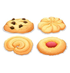 Four different flavours cookies vector image