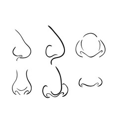 cartoon nose set symbol icon design beautiful vector image