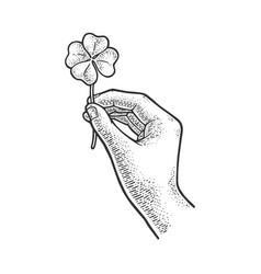 Clover in hand sketch vector