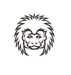 cotton top tamarin monkey head mascot vector image