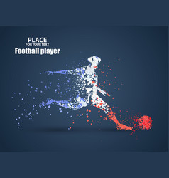 france football championship with player and flag vector image
