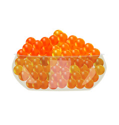 Red caviar in glass bowl isolated on white vector