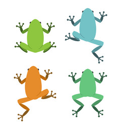 set frog in flat style vector image