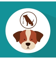 Veterinary dog care training icon vector