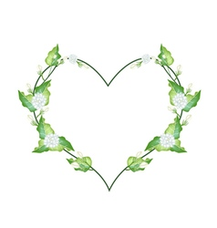 White Jasmine Blossoms in A Heart Shape vector