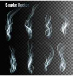 Set Of Transparent Different Smoke vector image