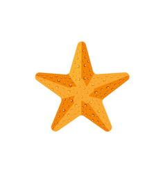 flat textured starfish star fish icon symbol vector image