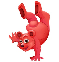 A red bear doing a handstand vector