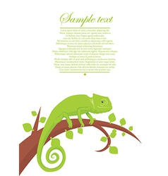 Cute cameleon vector