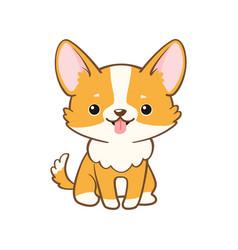 Cute corgi dog isolated on white background vector