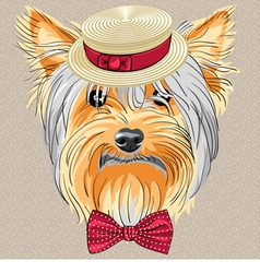 Hipster dog Yorkshire Terrier vector