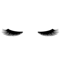 Long lashes vector