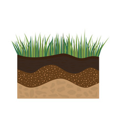 soil profile with grass vector image