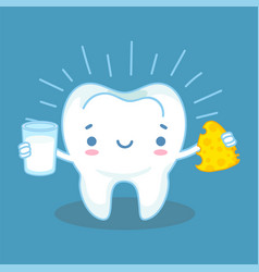 teeth and calcium healthy tooth and milk products vector image