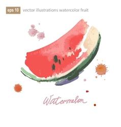 Watercolor of watermelon No transparency Gradients vector