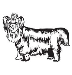 Decorative standing portrait of yorkshire terrier vector