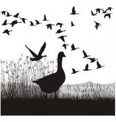 before migrating geese vector image vector image