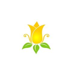 tulip flower beauty nature logo vector image