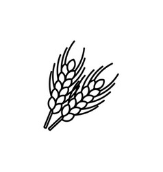 wheat ear line icon outline sign linear style vector image