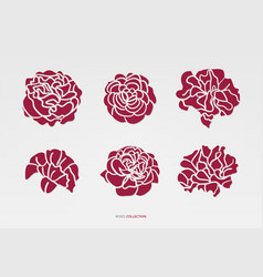 artistic red roses set vector image