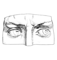 Davids eyes isolated vector