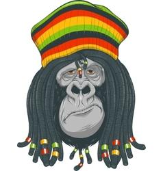 Gorilla Rastafarian vector