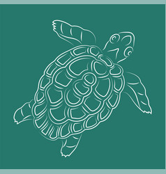 Hand drawn line art with white turtle silhouette vector