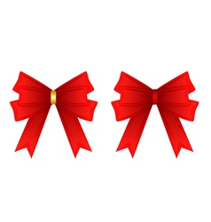 red ribbon tied in a bow Isolated on white vector image
