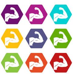 biceps icon set color hexahedron vector image vector image