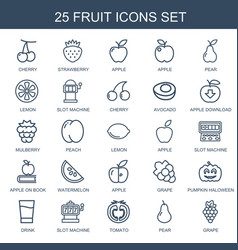 25 fruit icons vector image