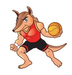 Basket Ball Armadillo vector image