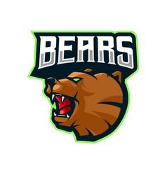 Bear head logo design vector