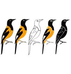 Corripiao bird in profile view vector