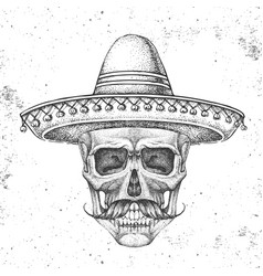 hand drawing hipster skull with sombrero hat vector image