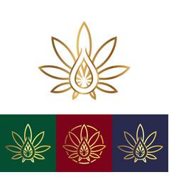 hemp oil logo vector image