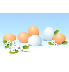 eggs and spring flowers on blue background vector image