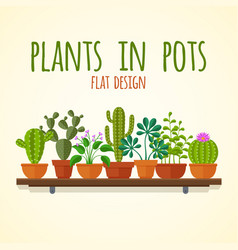 flat cactuses and home plantas concept vector image vector image
