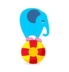 Blue elephant on ball Performing Circus animal Sad vector