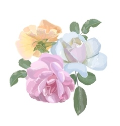 bouquet watercolor roses for invitation or vector image