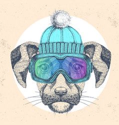 Hipster animal dog in winter hat vector