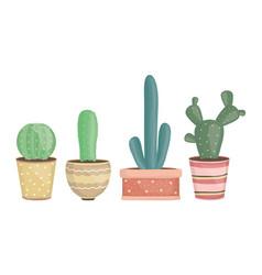 set exotic cactus plants in ceramic pots vector image