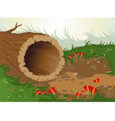 Nature cartoon vector image vector image