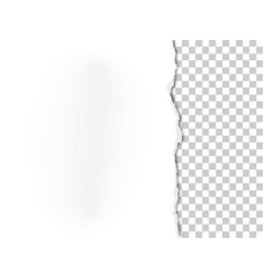 A piece white paper with torn part vector