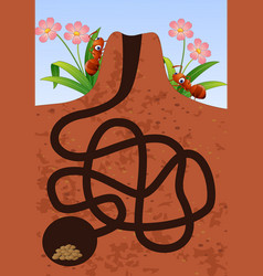 game maze help the ants find the house vector image