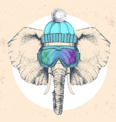 Hipster animal elephant in winter hat vector